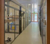 Duke Lemur Center Interior Hall