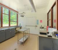 Duke Lemur Center Exam Room