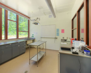 Duke Lemur Center Exam Room