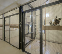 Duke Lemur Center Habitat Interior