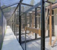 Duke Lemur Center Sideview