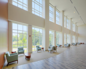 ECU Family Medicine Center Lobby Windows