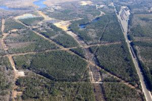 Wilmington Bypass II_1