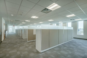 Albemarle Open Office