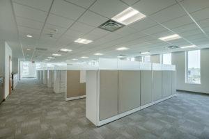 Albemarle Open Office